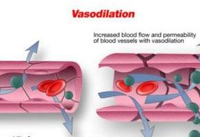 shalom float and wellness : Vasodilation